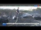Новости на Россия 24  Франция и Португалия не могут справиться с мощными лесными пожарами