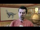 я Андрей Жуков Учёные против мифов