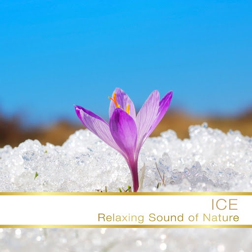 Fly Project альбом Ice RelaxIng Sound Of Nature