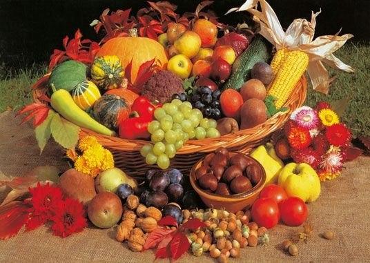 семинар здоровое питание