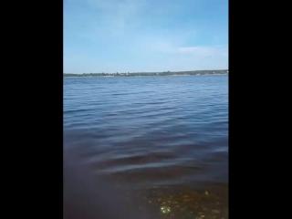 Ксюша Богдан - Live
