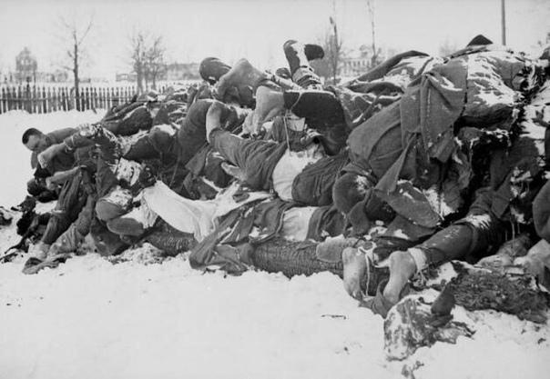 Мёртвые и забытые. Почему в Европе не знают число советских жертв войны