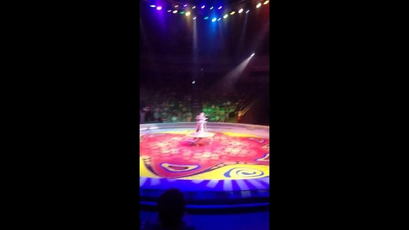 цирк филатовых👍👍👍