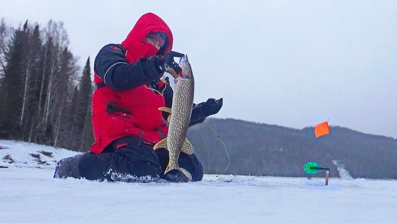 ВОТ ЭТО УЛЁТНАЯ РЫБАЛКА 52 Рыбалка видео приколы Поклевка за поклевкой Зимняя рыбалка Первый лед