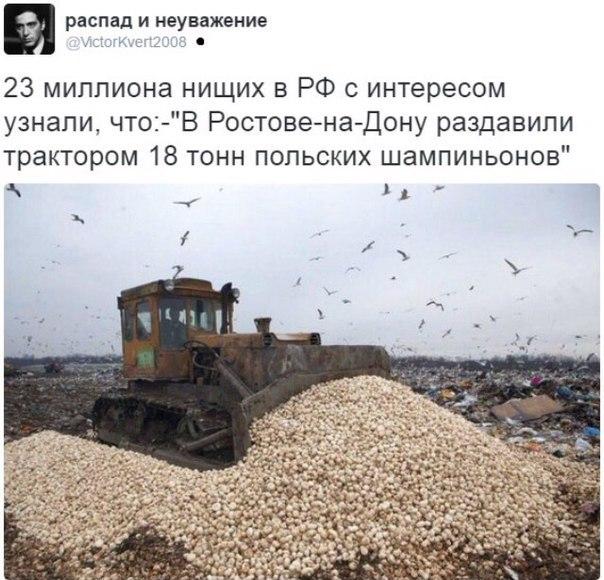 """Российские парламентарии хотят увеличить число школьных уроков истории: """"подъем патриотизма - нужно сохранить"""" - Цензор.НЕТ 4059"""