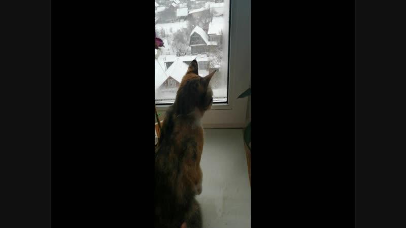 ириска и снежинки