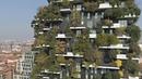 Милан делает ставку на зелень