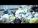 в Кирове пропадают мусорные баки