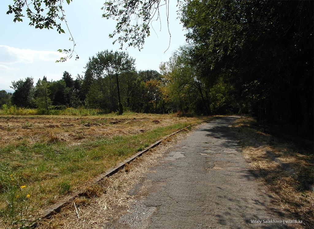 Дорога параллельно Аль-Фараби, Ботанический сад Алматы 2018