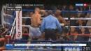 Новости на Россия 24 • Бой тысячелетия особенно впечатлил доходами бойцов