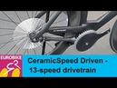 CeramicSpeed Driven Fully explained