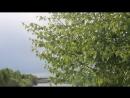 Шум ветра Кыддзявидзь 12 06 18