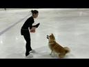 Алина Загитова вышла на лёд со своей собакой
