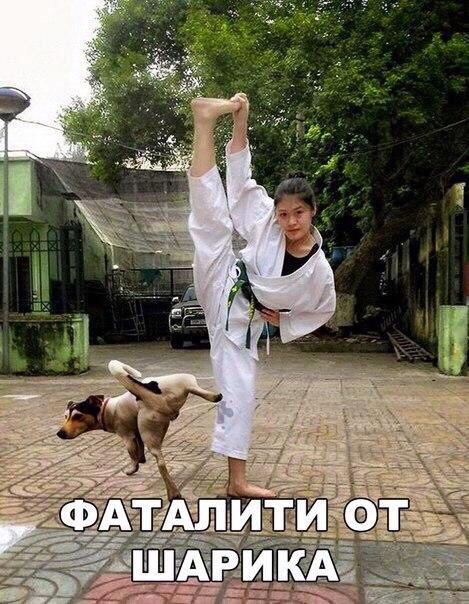 Фото №456249369 со страницы Дімы Чернеги