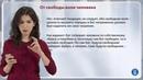 6.9 Теодицея - Диана Гаспарян