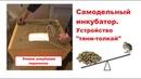 Самодельный инкубатор устройство тяни толкай Режим инкубации перепелов