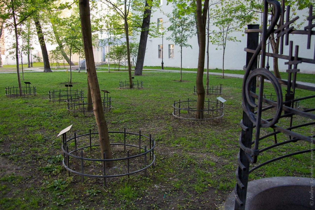двор со скрипками на Петроградке