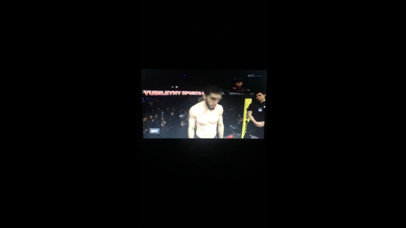 Дагестанцы на рингах планеты — Live