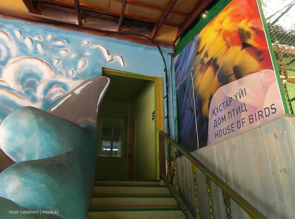 Дом птиц, алматинский зоопарк