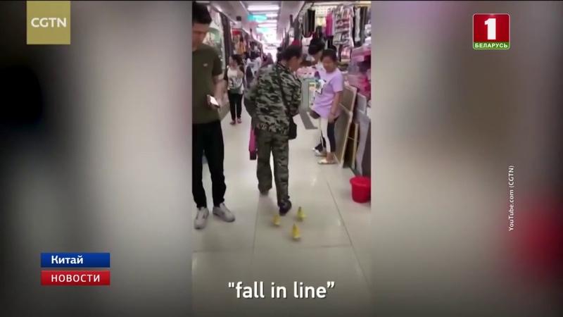 В Китае мужчина пришел в супермаркет с тремя маленькими утятами
