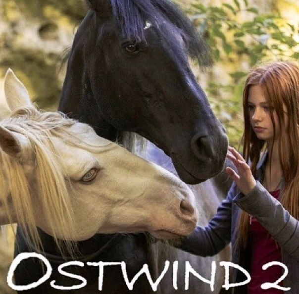 Восточный ветер 2 (2 15) - смотреть онлайн - My-hit org