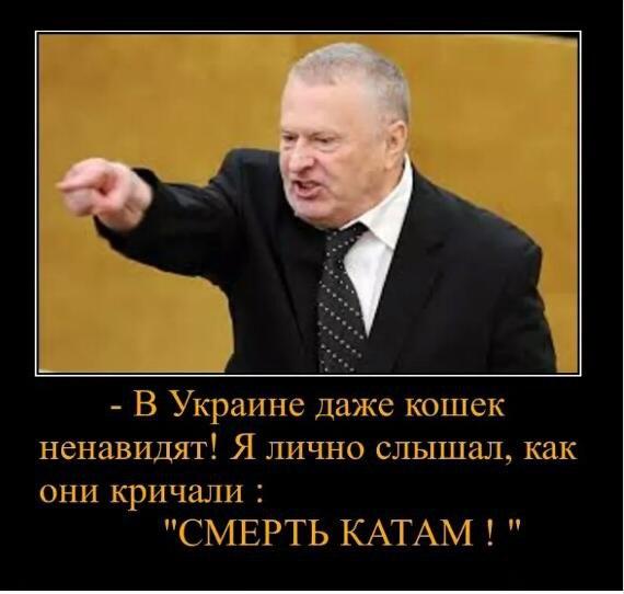 Сенаторы США выступили за предоставление Украине летального оружия и усиление санкций против РФ, - посольство Украины - Цензор.НЕТ 777