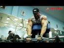 Дмитрий Голубочкин. Мотивация в бодибилдинге
