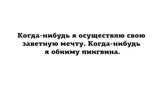 Фото №388024729 со страницы Михаила Трапезникова