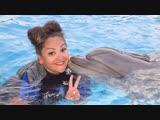 Мой день рождения 🎁 Плавание с дельфинами 🐬