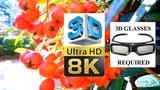 8K ULTRA-HD 4320p - 3D