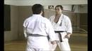 Karate Kihon Ippon Kumite 16 16