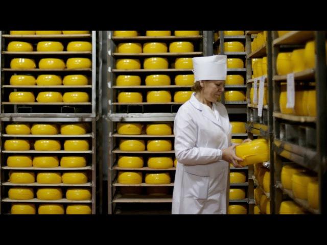 Чаму расейцы могуць застацца без беларускіх сыроў | Россельхознадзор задержал беларусский сыр Белсат