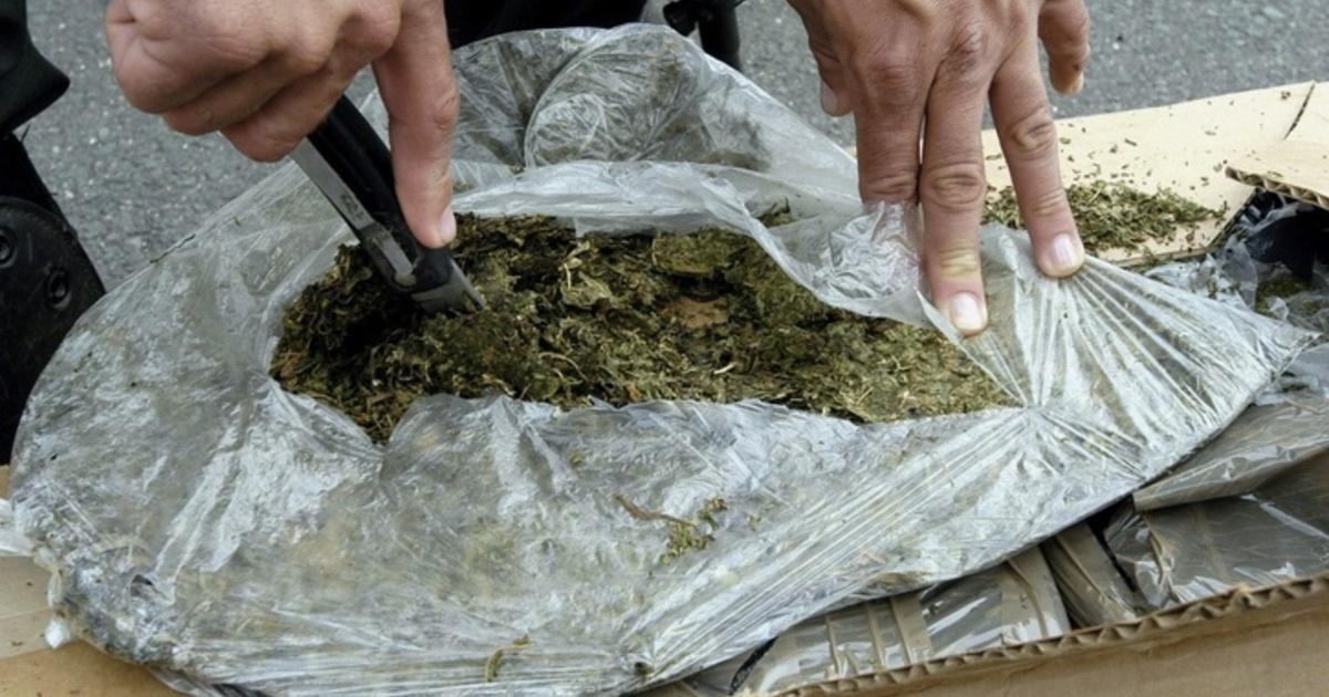 Под Таганрогом полицейские задержали бывшего мошенника с 600 граммами марихуаны