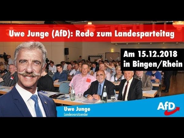 Rede des Landesvorsitzenden Uwe Junge (AfD) auf dem Landesparteitag in Bingen (15.12.2018)
