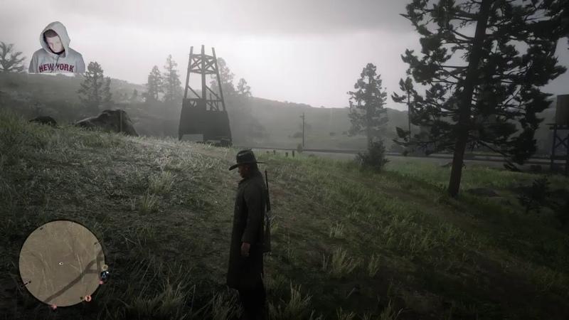 Red Dead Redemption 2 ONLINE. Любезный Ковбой без стада и ранчо)
