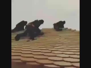 Instagram WhatsApp Üçün Çox Gözəl Çox Maraqlı Status (Bandit) 2018 By Ayaz Azeri.mp4