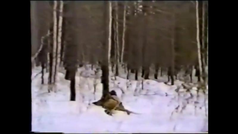 Боевая жизнь 344 рп.1996г. Иркутск