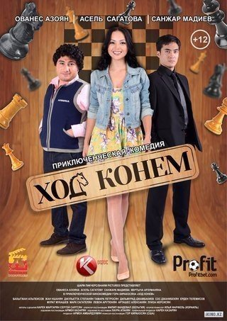 Ход конём (2013)
