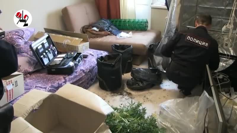 [Новости Шеремета Девять с половиной] Буйные соседи спалили наркобарыгу.