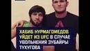 хабиб нурмагомедов уйдет из UFC в случае увольнения зубайры тухугова