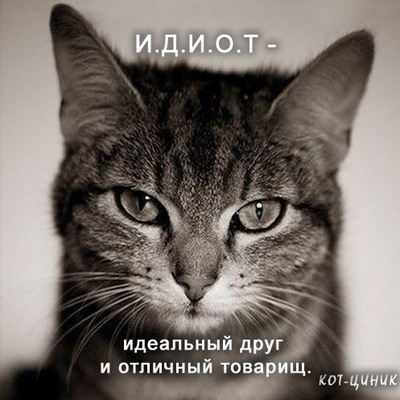 Defeu Волх, 20 июня , Санкт-Петербург, id12784963