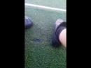 на футбольном поле
