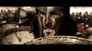 Тысячи стрел против спартанцев! Будем драться в тени! 300 спартанцев 2007