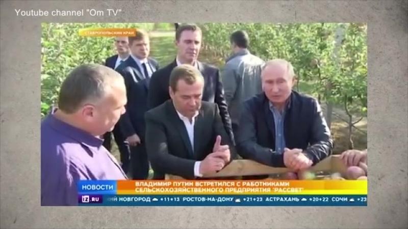Яблочный криминалитет России. Путин крышует рейдеров