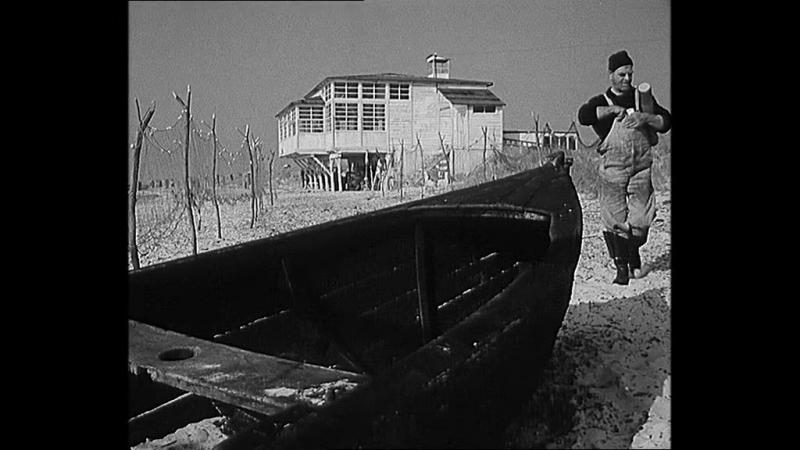 Holubice/ Белая голубка/ Франтишек Влачил (1960)