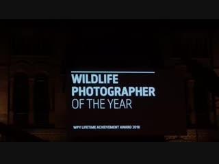 Wildlife Photografer of the year 2018. Прямой эфир. Премия за достижения в области фотографии