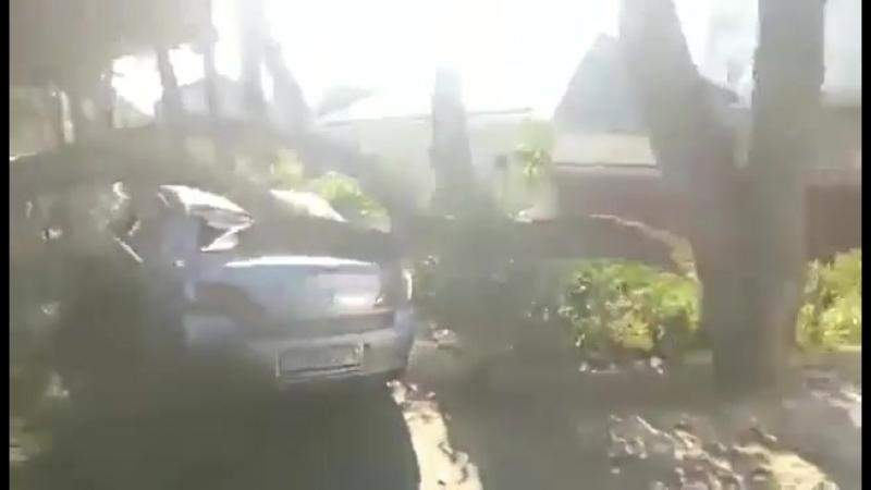 Ветка упала на Мазду Анапа 14 июля