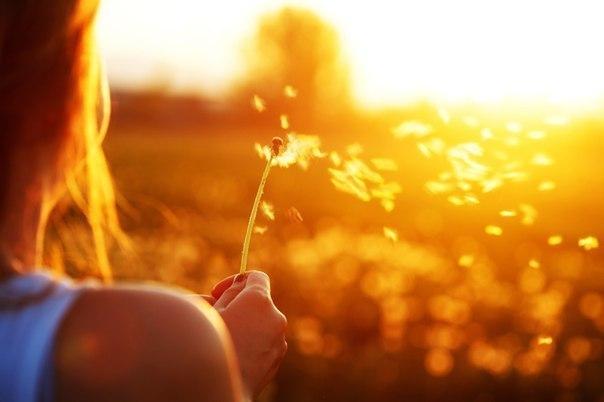 Кто понял жизнь, тот больше не спешит,