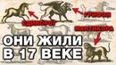 7 МИФИЧЕСКИХ ЗВЕРЕЙ КОТОРЫЕ СУЩЕСТВОВАЛИ НА САМОМ ДЕЛЕ ЕДИНОРОГИ И ГРИФОНЫ ЭТО РЕАЛЬНЫЕ ЖИВОТНЫЕ