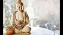 Там, где встречаются наука и буддизм.